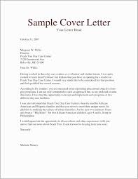 Example Cover Letter And Resume 48 New Professional Resume Cover