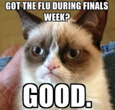 flu-meme-angry-cat-300x287.png via Relatably.com