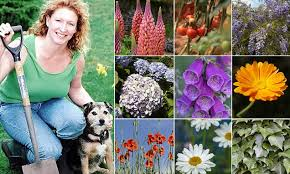 charlie dimmock issues warning over flowers shrubs and trees that harm your pet daily mail