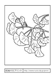 イチョウ銀杏主線黒大阪府の木無料塗り絵都道府県ぬりえ