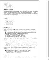 Animal Shelter Volunteer Sample Resume