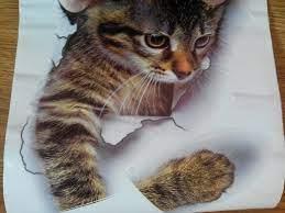Cat wallpaper, Decorating bathroom ...