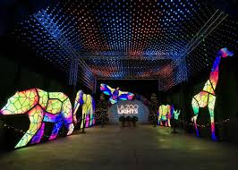 La Zoo Lights 2018 Tickets Discount Tickets To La Zoo Lights 2019 Socal Field Trips