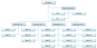 Business Organizational Chart Beauteous Organization Chart Extension