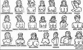Breast Chart The Best Breast Chart Where Do You Fit In
