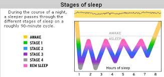 Ysk Sleep Cycles Occur In 90 Minute Intervals Get Up When