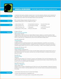 Graphic Designer Resume Template Resume Template Indesign Lovely Graphic Design Resume Samples Full 58