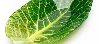 Салатник Walmer Colourful Leaf <b>Lettuce</b>, 16х26 см, купить в ...