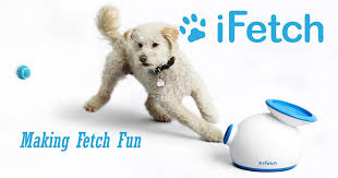 <b>Automatic</b> Ball Launcher for Dogs - iFetch and iDig <b>Pet Toys</b>