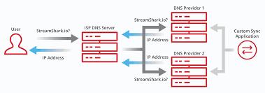 Service Update Multi Dns Streamshark
