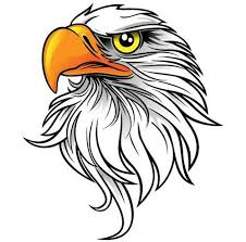 eagles clipart free download. Exellent Free 44 Images Of Eagle Mascot Clipart You Can Use These Free Cliparts Intended Eagles Download G