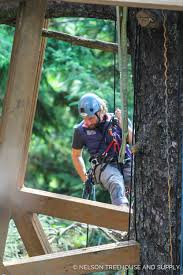 treehouse masters alex meyer. Alex Meyer 10 Things You Didnt Know Nelson Treehouse Masters