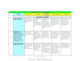 Nonprofit Business Plan Template Strategic Plan Template For Nonprofits