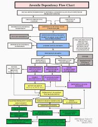 18 Punctilious Legislative Process Chart