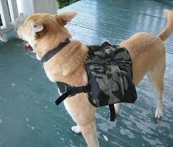 dog backpack diy