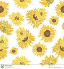 Sunflower Pattern Best Sunflower Vector Seamless Pattern On The White Stock Vector