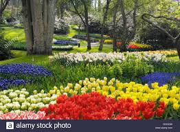 Small Picture Formal Garden Design Stock Photos Formal Garden Design Stock