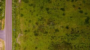 grass field aerial. Download Aerial Grass Texture Stock Photo. Image Of Ground, Above - 73493700 Field