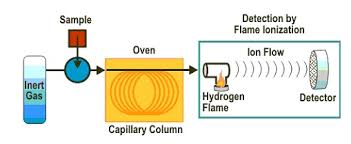 Of fid Science Detector In Ionization Flame Gas Chromatography 60nqBwx