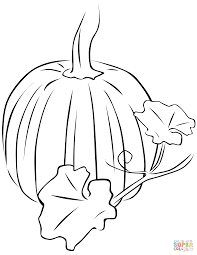 pumpkin drawing with leaves. click the pumpkin with leaves drawing a