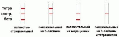 Экспресс тесты на антибиотики для молока twinsensor kit  Линия для s лактам антибиотиков пенициллинов и цефалоспоринов находится под линией контроля а линия относящаяся к тетрациклинам находится выше неё