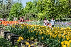 kennett square pa the splendor of spring emerges at longwood gardens march 30 may 5 enjoy hundreds of lush acres featuring burgeoning gardens of