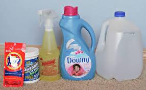 best homemade carpet cleaner solution
