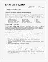 Finance Intern Resume Fresh Summary A Resume Lovely Summary For