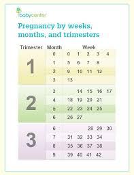 How Far Is My Pregnancy Now Shantis Blog