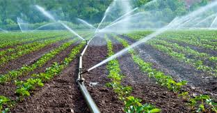 Exposed Best Irrigation Methods For Your Crops The Change Trend