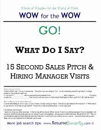 Sample Pitch For Resume Resume Elevator Pitch Resume For Study 7