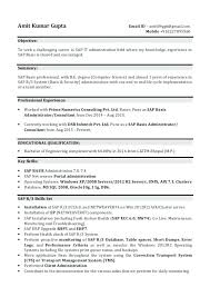 Sap Security Consultant Resume Samples Best Of Amazing Sap Security Resume For Freshers About Sap Basis Resume