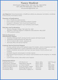 Direct Support Professional Resume Sample Free It Support Resume
