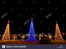 Christmas Bright White Lights Three Christmas Trees Bright Colors Two White Lights One