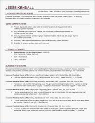 Professional Objective For Resume Unique Objective Resume Examples