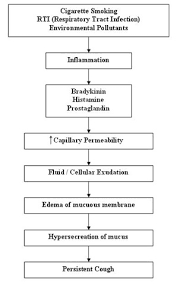Pathophysiology Of Emphysema Flow Chart Pathophysiology Of Chronic Bronchitis Copd Nursing Crib