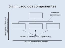 Organizational Models Blog Luz