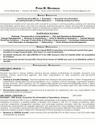 Resume Examples Templates Cool Simple Example Of Executive Resume