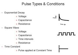Understand Electroporation Pulse Types Transfection