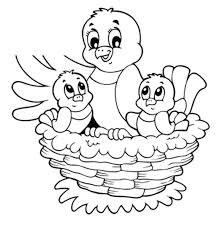 Spring Birds Coloring Pages With Coloring Page Bird Nest Coloring