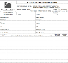 Example Of Bill Of Lading Document Bill Of Lading Template In Excel