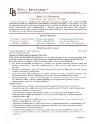 Resume Summary Examples How To Write Resume Summary Statement Examples Skills For Great A 39