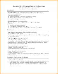 Resume Writing Write In Candidate   Professional resumes sample online