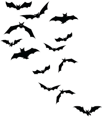 Bat Design – Pwllhelionline.info