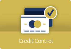 Credit Control Amc Business Solutions