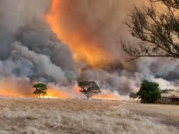 GROZLJIVE RAZSEŽNOSTI POŽAROV V AVSTRALIJI: Oblak dima opazili celo v Čilu  in Argentini