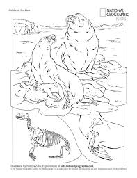 Small Picture Coloring book animals