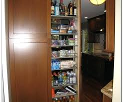 Full Size Of Diy Pull Out Pantry Shelf Shelves Ikea Menards Storage Cabinet  In Witching Furniture ...