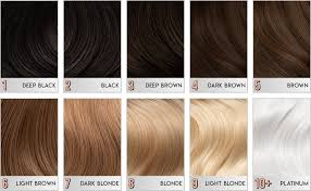 Green Light Luxury Hair Color Chart Arctic Fox Vegan And Cruelty Free Semi Permanent Hair Color Dye 4 Fl Oz Purple Rain