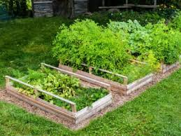 hillside garden beds creating raised
